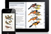 Appweavers, Inc. a developer of mobile nature applications, today introduced Peterson Birds of North America, an iPhone and iPad field guide to birds. The new app gives birders and nature...