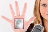 Fujitsu Frontech North America Inc., a leading provider of IT-based business solutions, including advanced technology products, biometric security, and digital media solutions, announced that it has joined the International Biometrics...